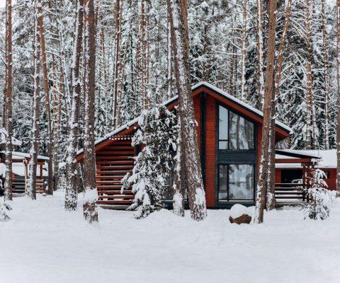 La construction d'un chalet : pourquoi choisir ce type d'habitation ?